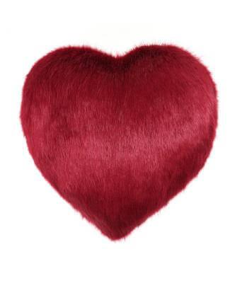 Crimson Heart Cushion