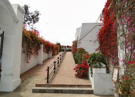 Lima e suas surpresas: Hotel B.