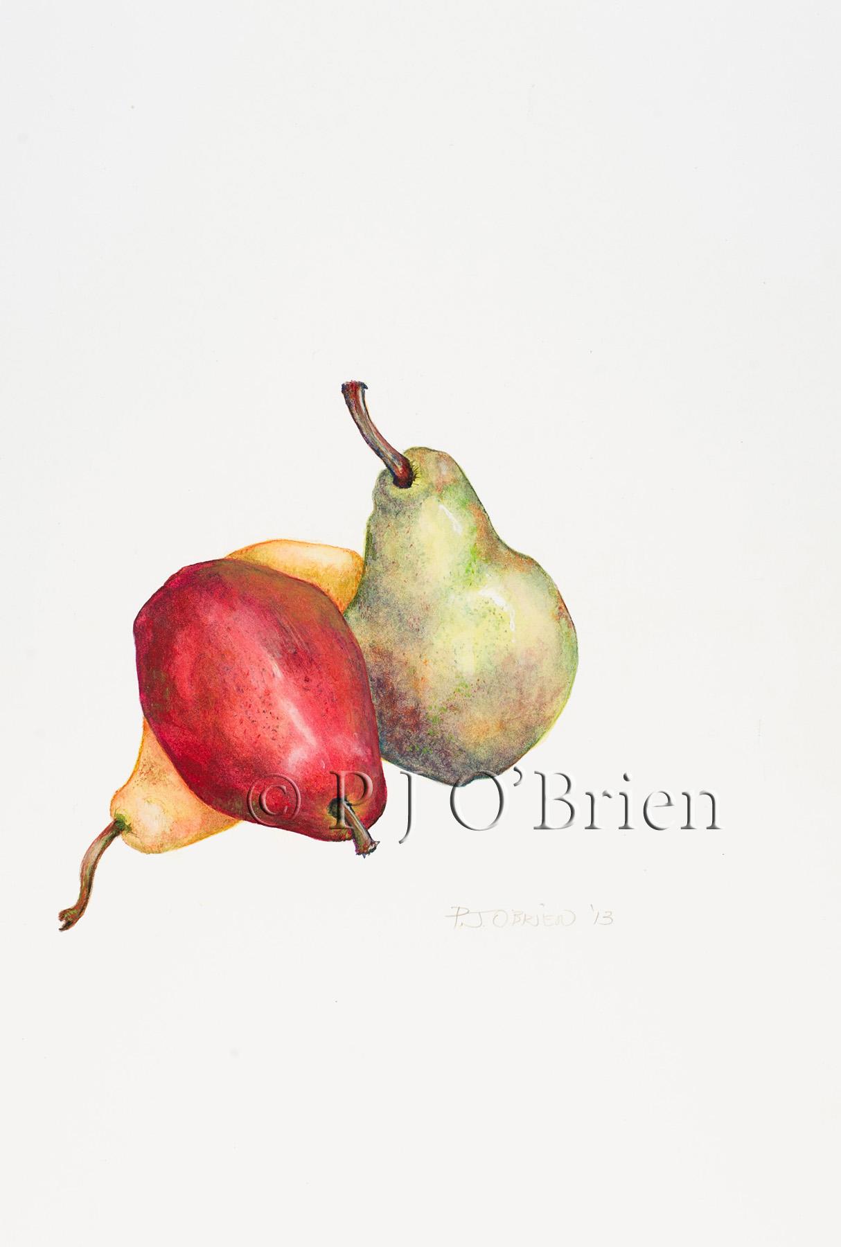 Three Pears.jpg