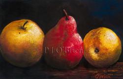 Apple and Pears.jpg