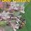 Thumbnail: Bee Culture - Digital