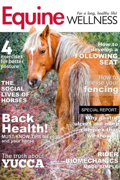 Equine Wellness - Digital