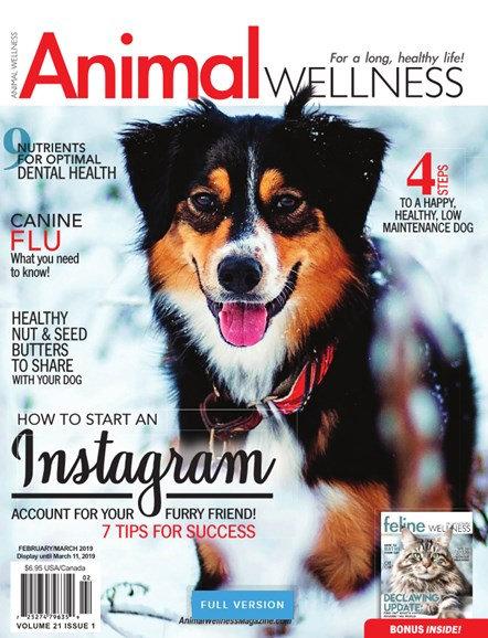 Animal Wellness - Digital