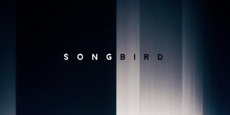 Movie Night: Songbird