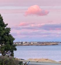 pink clouds on coast.jpg