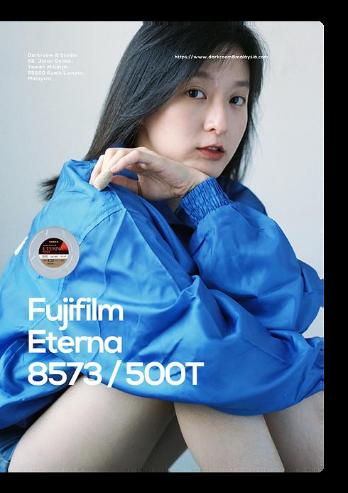 Fuji 500t 3-01.png