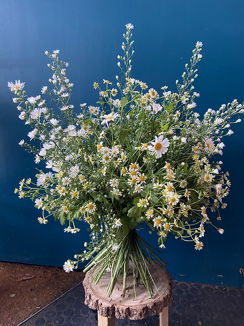 Filled with Daisy's