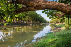Cambodia (4 of 24).jpg