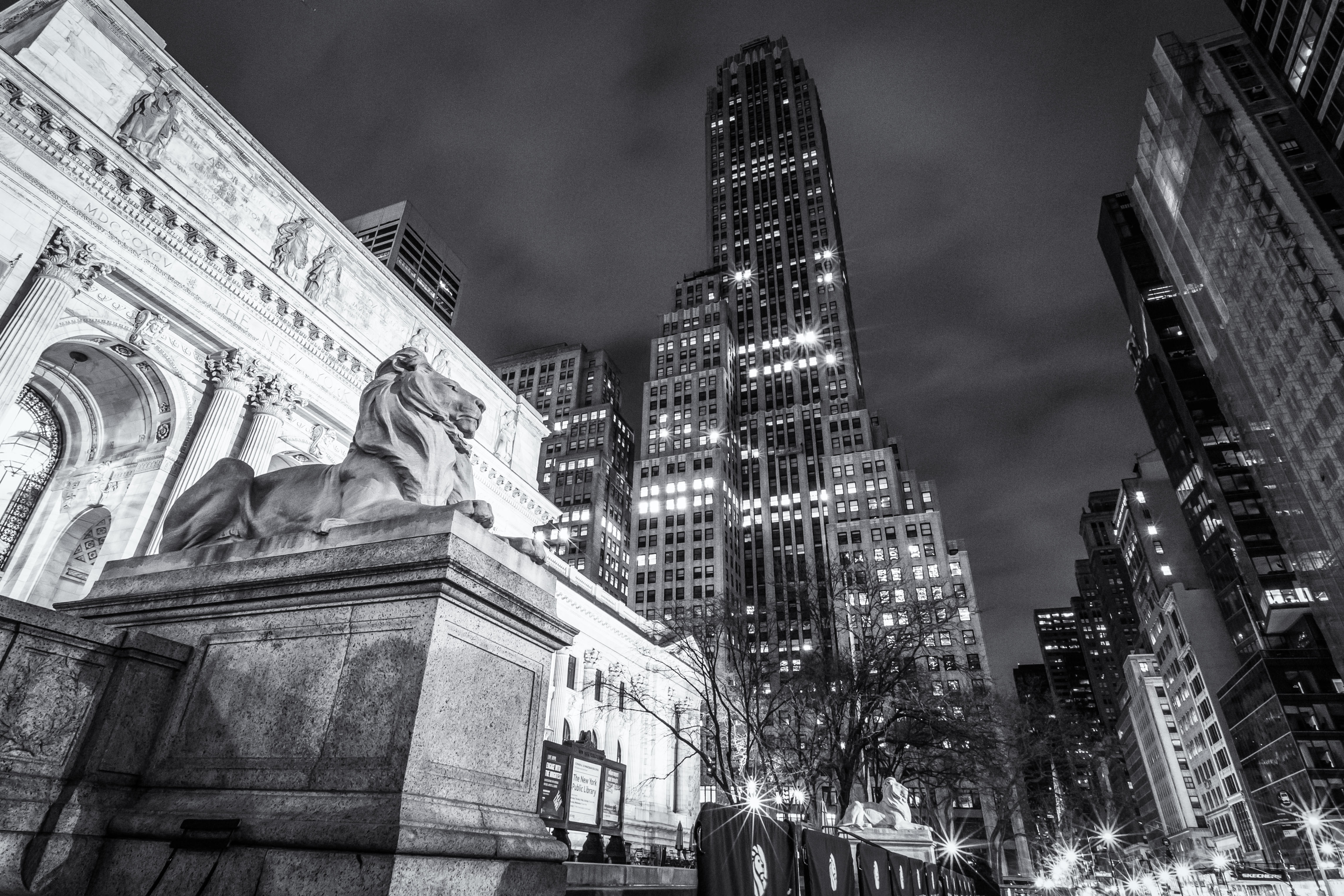 NYC (4 of 6).jpg