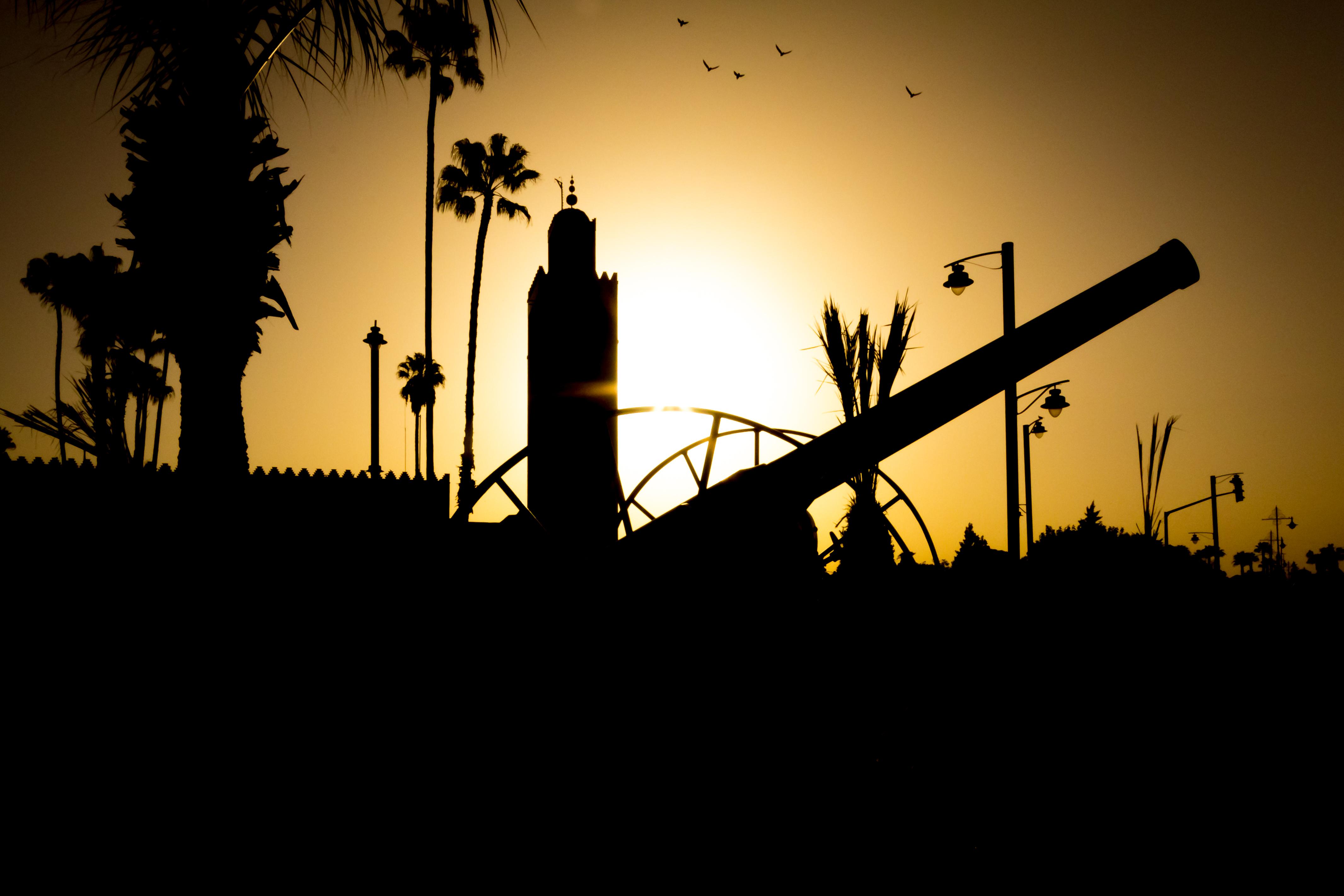 Morocco (12 of 15).jpg