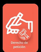 DERECHO DE PETICION.png
