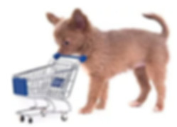 Dog Pushing Cart