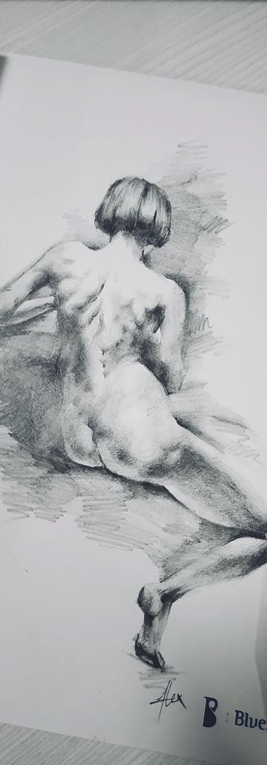 Anatomy Pencil Sketch