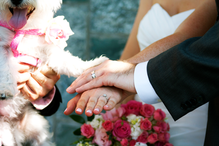 LRP Website wedding 5.png