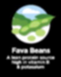 Hughes BrandMix Adirondack Iconography Fava Beans