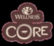 Wellness CORE Brand Identity