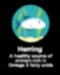 Hughes BrandMix Adirondack Iconography Herring