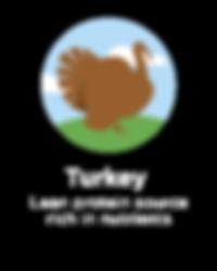 Hughes BrandMix Adirondack Iconography Turkey