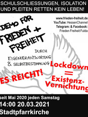 20.03.2021  Demo Fulda Infostand.jpg