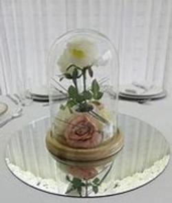 Glass dome 3