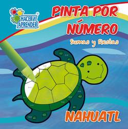 7018 PINTA POR NUMERO NAHUATL