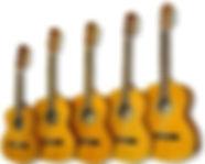 strunal_guitars_edited.jpg