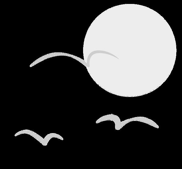 Beispiel-Möwen-Grau.png