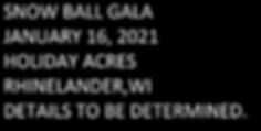 Snow_Ball_Gala_2021.png