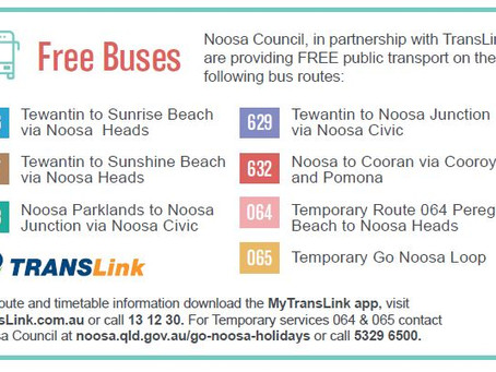 Go Noosa Holidays - Free buses and Easy Transportation During Easter 2021