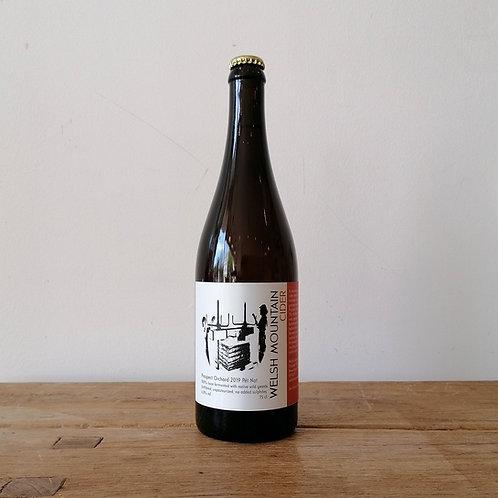 Welsh Mountain Cider - Prospect Orchard Pet Nat 2019