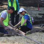 Oak Woodland Construction