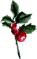 Holly and berries.png