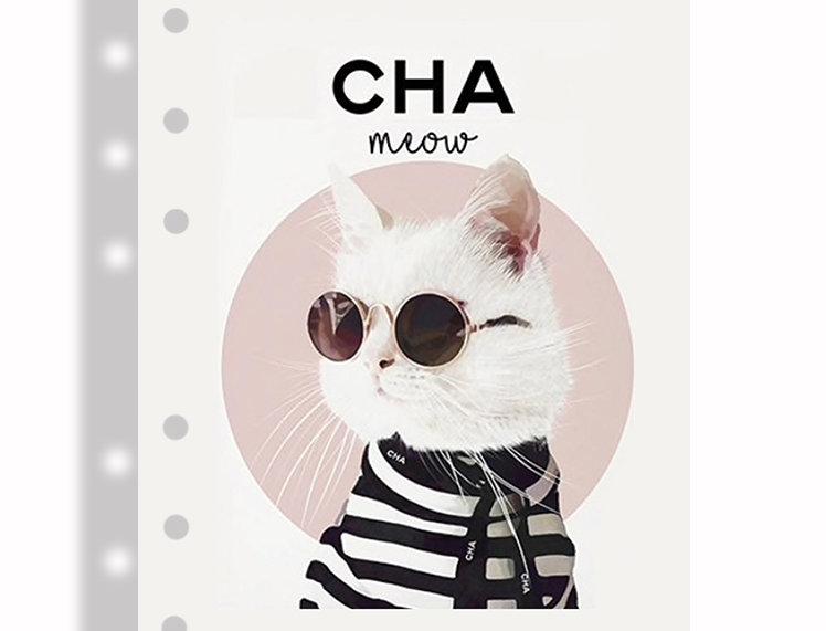 A5 dashboards - Cat