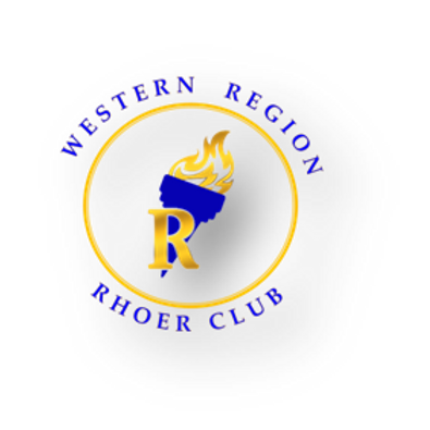 Rhoer - Fuzzy Socks (Gold)