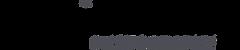 dv-logo-horizontal.png