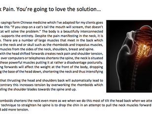 Neck Pain. You are going to love the solution!