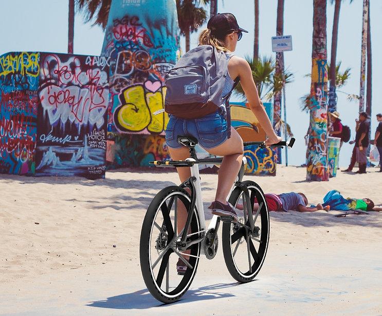 Flux Beach Rider FinishedSMALL_edited_ed