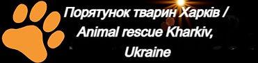 Порятунок тварин Харків