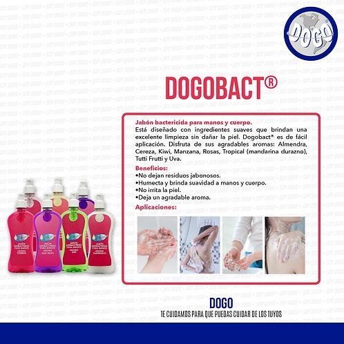 DogoBact