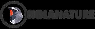 IN logo - grey.png