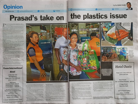 The Fake Plastics Purge