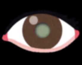 eye_hakunaisyou.png