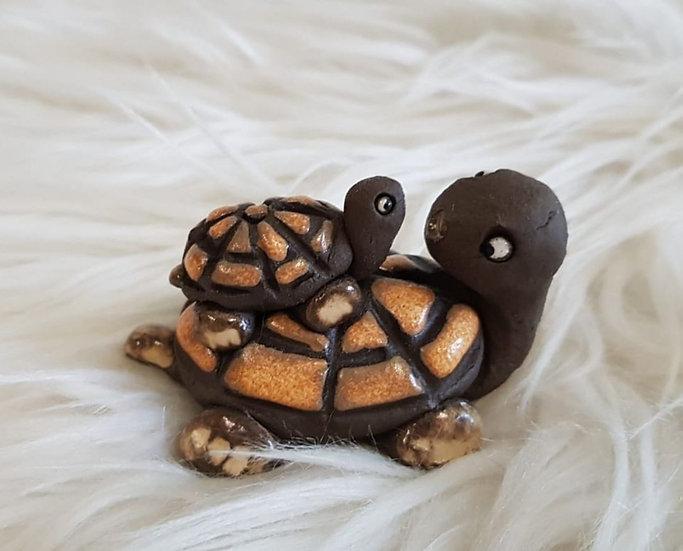 Schildkrötenfamilie