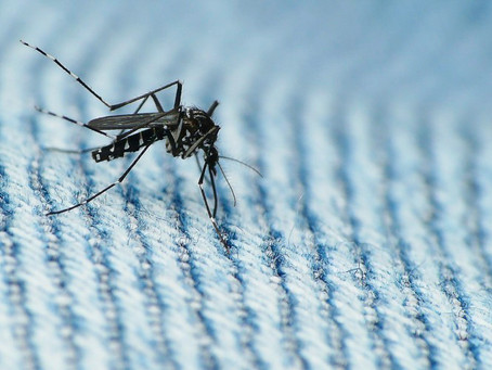 CASE STUDY: Unmanned Aircraft Systems to Seek and Destroy Mosquito Populations