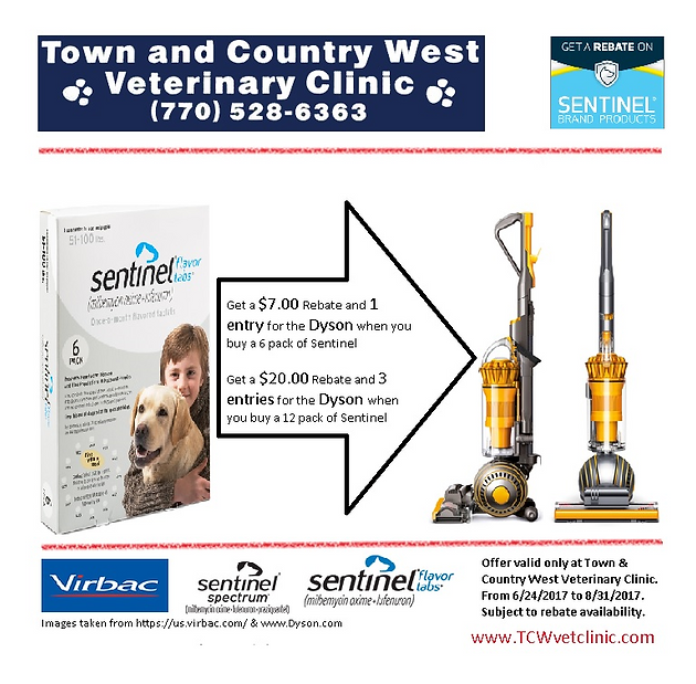 Win a Dyson vacuum cleaner and up to $20 | Town & Country West ...