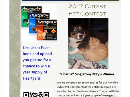 Cutest Pet Contest 2nd Winner