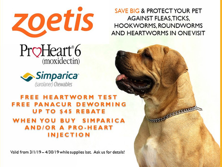 Free Heartworm Test, Free Dewormer and Up to $45 back with Simparica & ProHeart6 during March &a