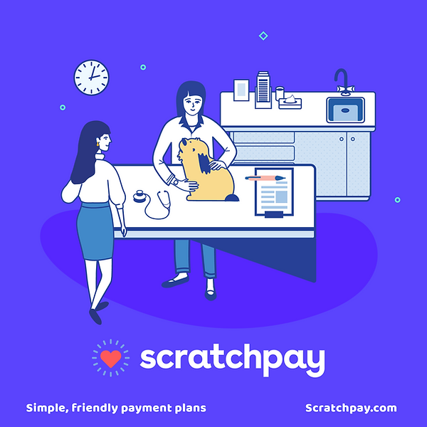 Veterinary Scratchpay Picture.png