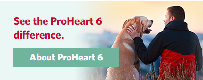 About Proheart6