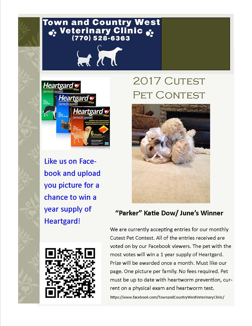 Cutest Pet Contest Winner June 2017